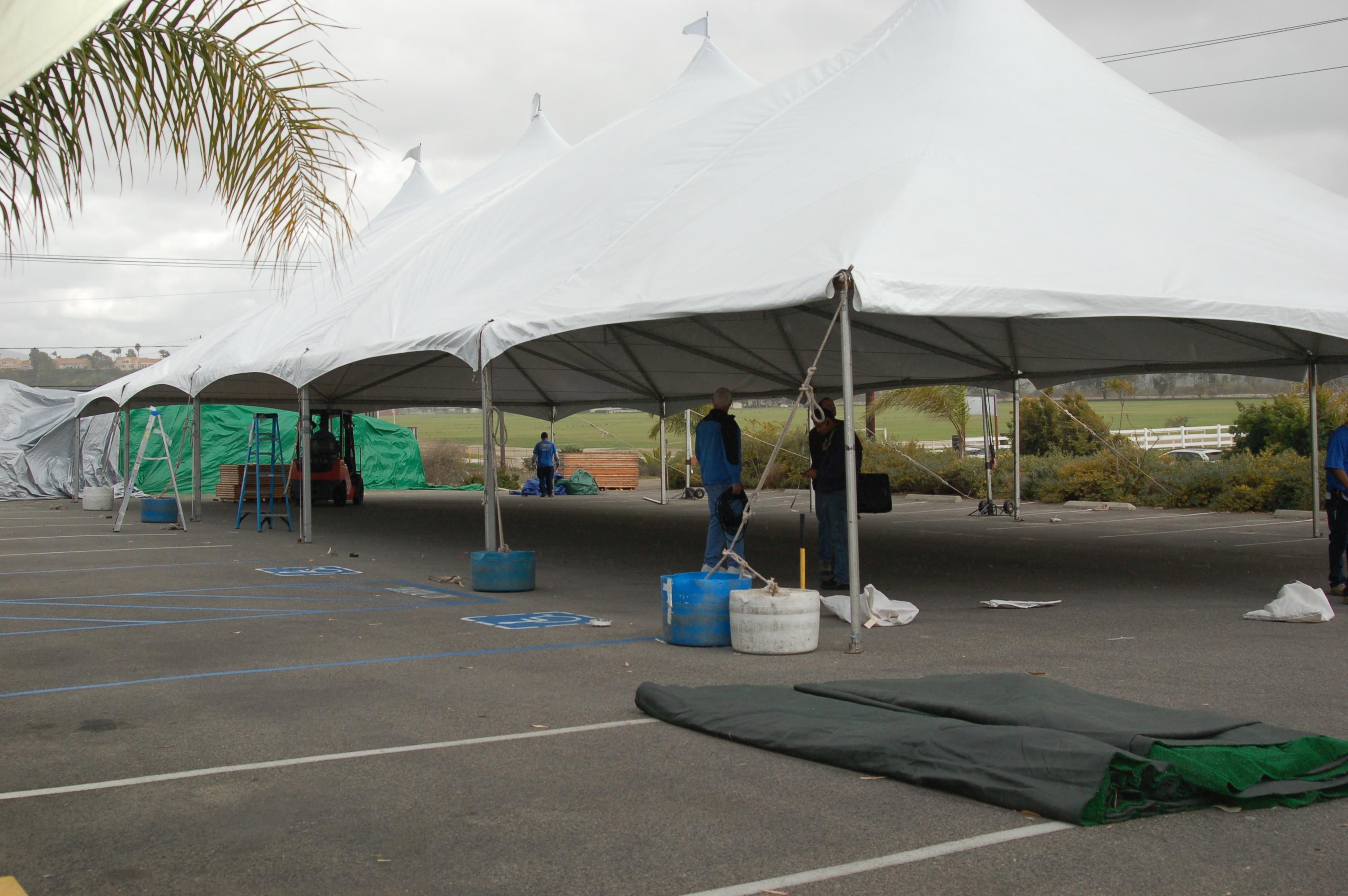 tent sale equestrian horses discounts u201c & Maryu0027s Tack and Feed Tent Sale 2013! | Maryu0027s Tack u0026 Feed