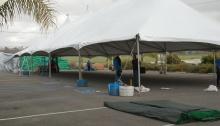 tent sale, equestrian, horses, discounts