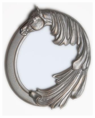 stardust horse mirror