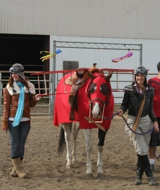 Halloween Horse Contest Winner: Amelia Earhart!