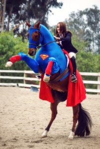 Halloween Horse Contest Runner-up: My Hero!