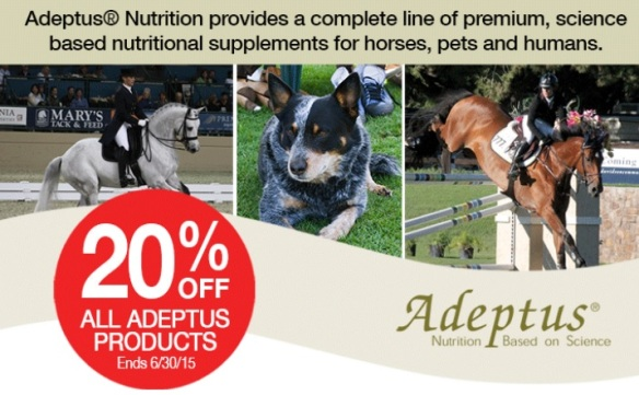 Adeptus20%Off