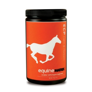 equine_ecp calm_front