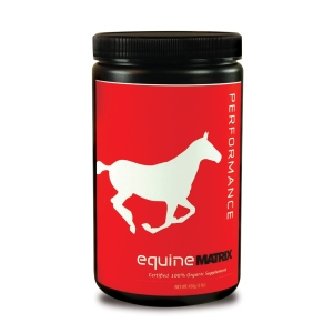 equine_performance_front