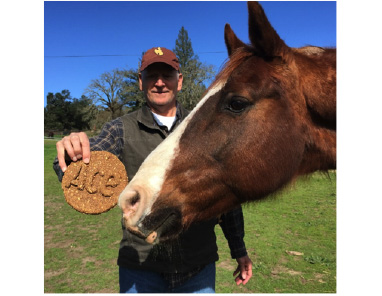 Ace, a newly rescued NSH of Stephanie and her husband, enjoying his custom made Mrs. Pasture's horse cookie!